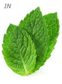 peppermint oil (India)