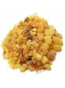 Olibanum (frankincense) oil