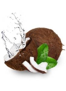 Exotic Coconut (Bath & Body Works)
