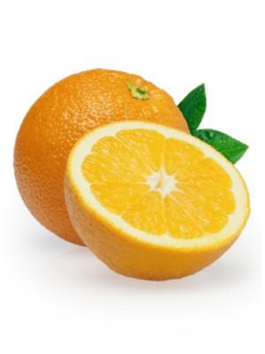 Bitter Orange Oil (Peel)